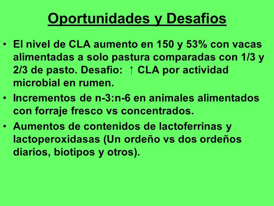 Oportunidades y Desafios El nivel de CLA aumento en 150 y 53% con vacas alimentadas a solo pastura comparadas con 1/3 y 2/3 de pasto. Desafio: CLA por