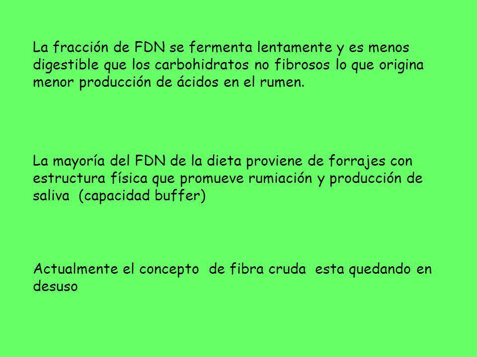 La fracción de FDN se fermenta lentamente y es menos digestible que los carbohidratos no fibrosos lo que origina menor producción de ácidos en el rume