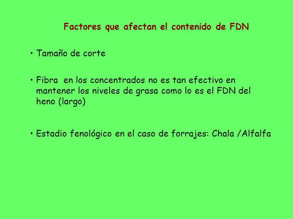 Factores que afectan el contenido de FDN Tamaño de corte Fibra en los concentrados no es tan efectivo en mantener los niveles de grasa como lo es el F