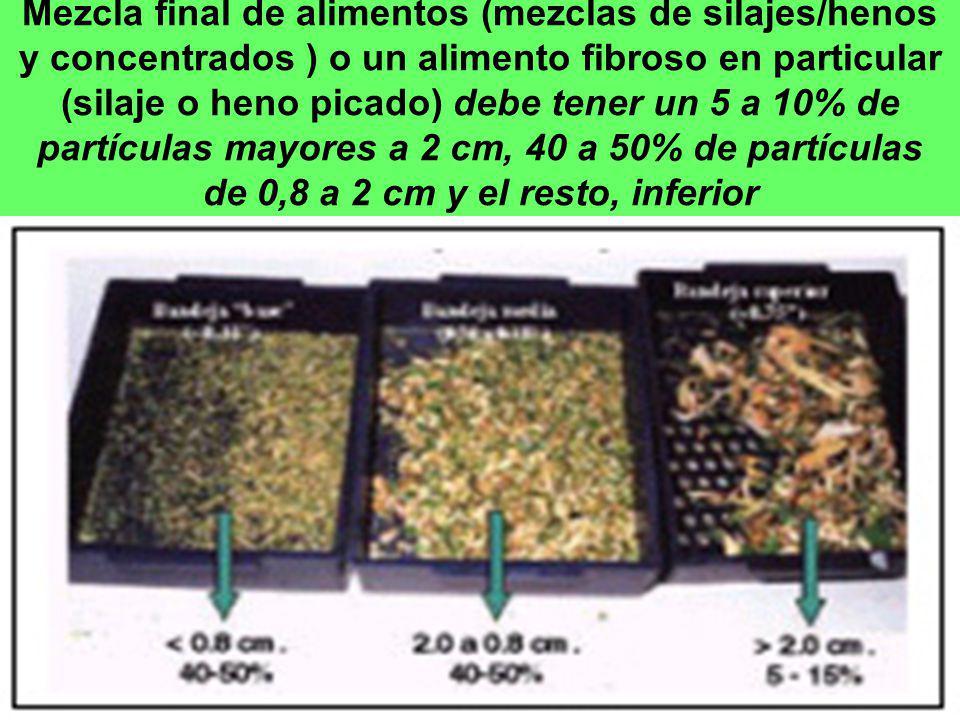 Mezcla final de alimentos (mezclas de silajes/henos y concentrados ) o un alimento fibroso en particular (silaje o heno picado) debe tener un 5 a 10%