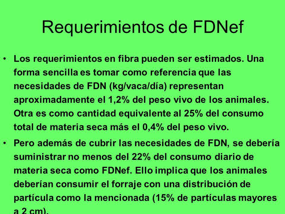 Requerimientos de FDNef Los requerimientos en fibra pueden ser estimados. Una forma sencilla es tomar como referencia que las necesidades de FDN (kg/v