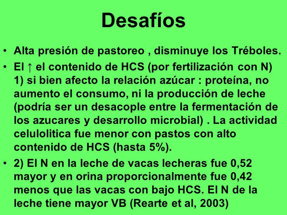 Desafíos Alta presión de pastoreo, disminuye los Tréboles. El el contenido de HCS (por fertilización con N) 1) si bien afecto la relación azúcar : pro