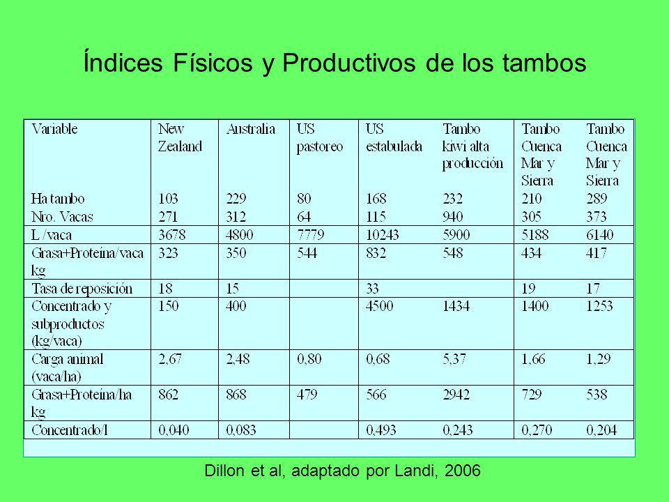 Índices Físicos y Productivos de los tambos Dillon et al, adaptado por Landi, 2006
