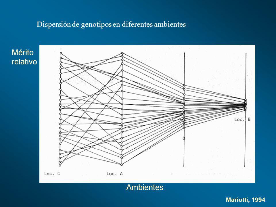Dispersión de genotipos en diferentes ambientes Ambientes Mérito relativo Mariotti, 1994