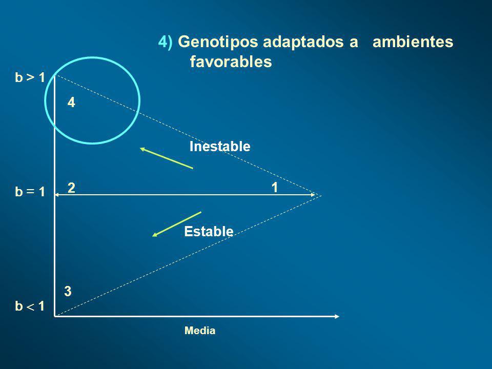 Media b > 1 b 1 b = 1 1 2 4 3 4) Genotipos adaptados a ambientes favorables Estable Inestable