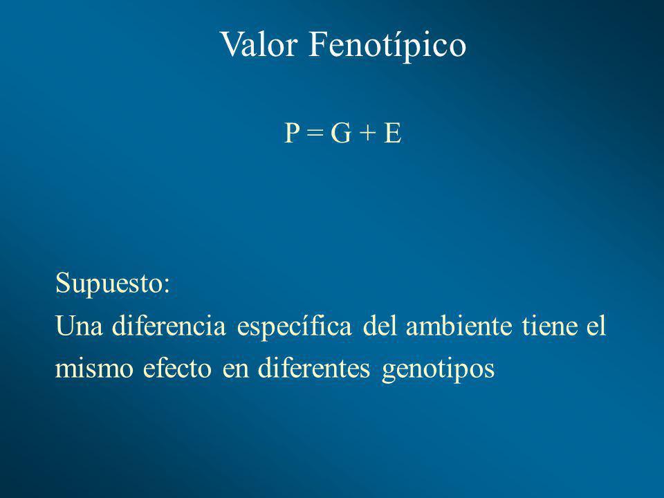 Valor Fenotípico P = G + E Supuesto: Una diferencia específica del ambiente tiene el mismo efecto en diferentes genotipos