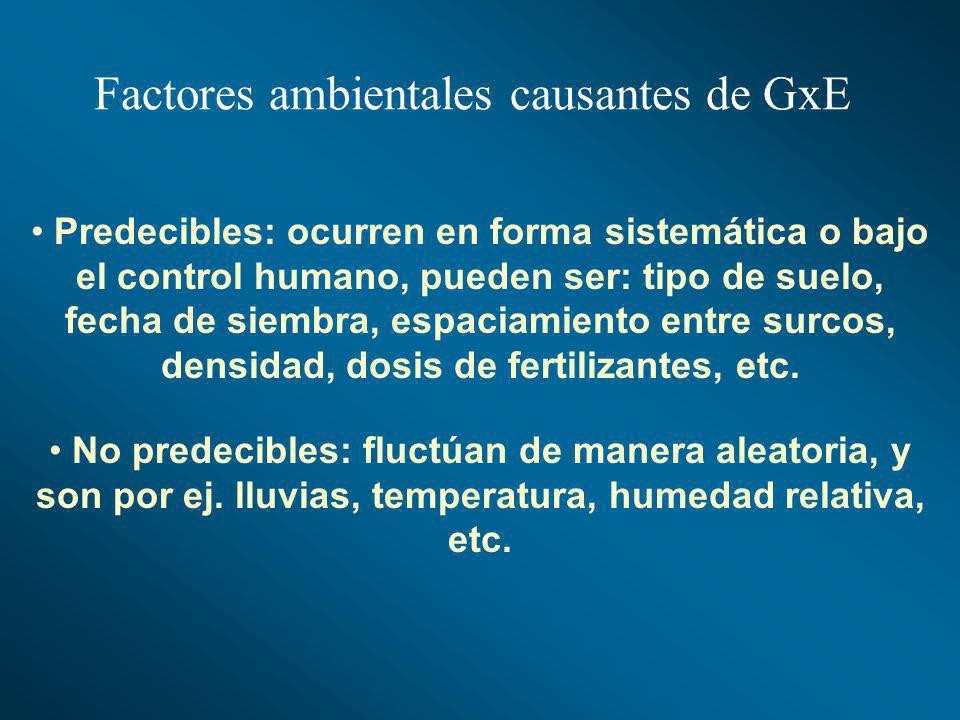 Factores ambientales causantes de GxE Predecibles: ocurren en forma sistemática o bajo el control humano, pueden ser: tipo de suelo, fecha de siembra,