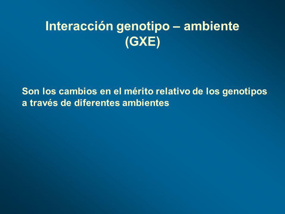 Son los cambios en el mérito relativo de los genotipos a través de diferentes ambientes Interacción genotipo – ambiente (GXE)