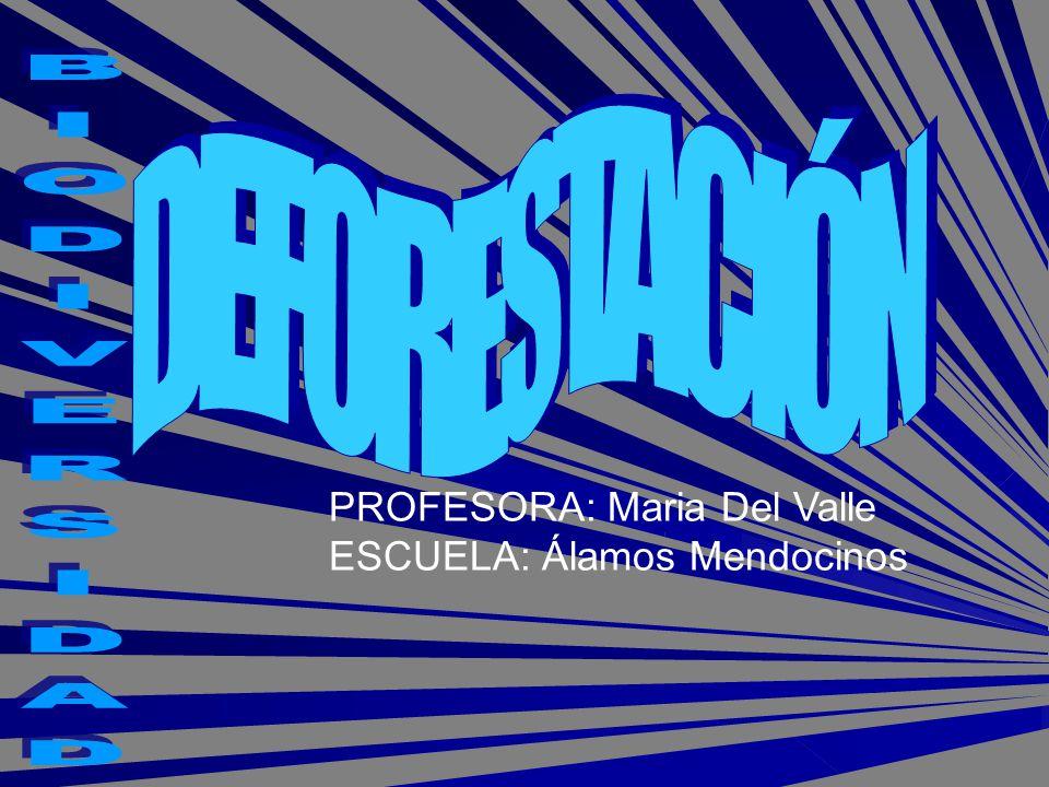 PROFESORA: Maria Del Valle ESCUELA: Álamos Mendocinos