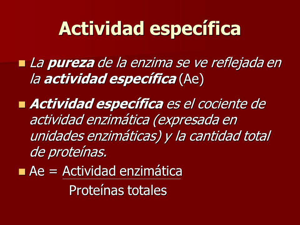 Actividad específica La pureza de la enzima se ve reflejada en la actividad específica (Ae) La pureza de la enzima se ve reflejada en la actividad esp