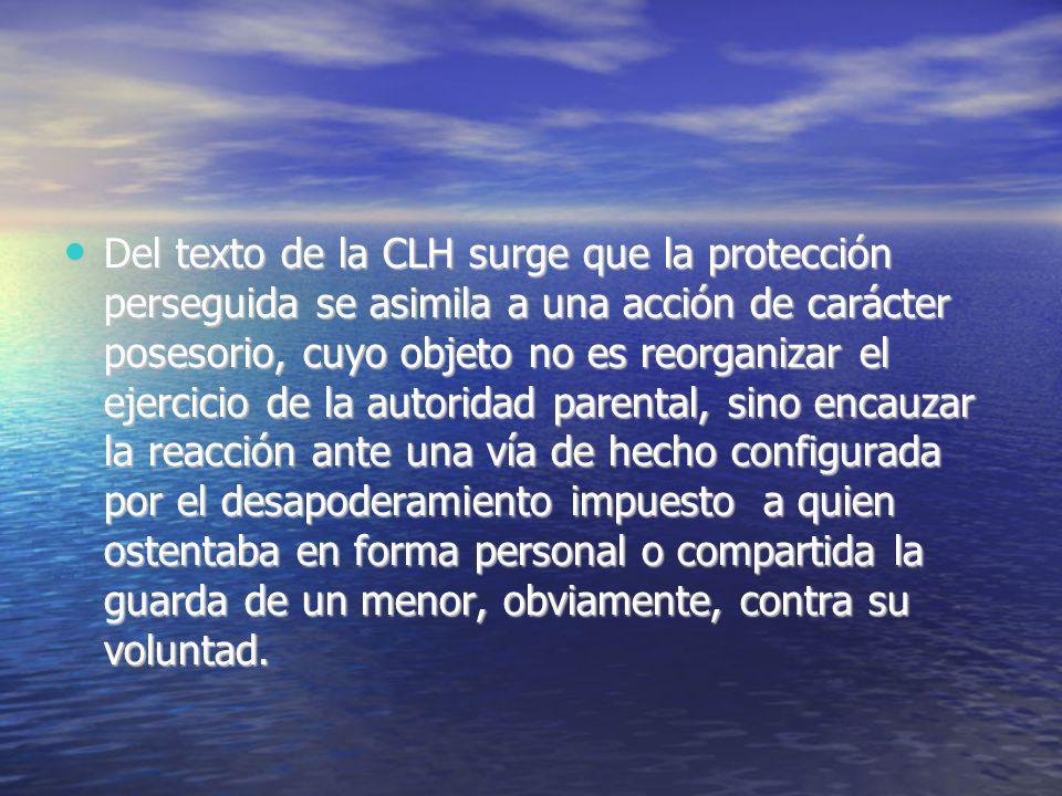 Del texto de la CLH surge que la protección perseguida se asimila a una acción de carácter posesorio, cuyo objeto no es reorganizar el ejercicio de la