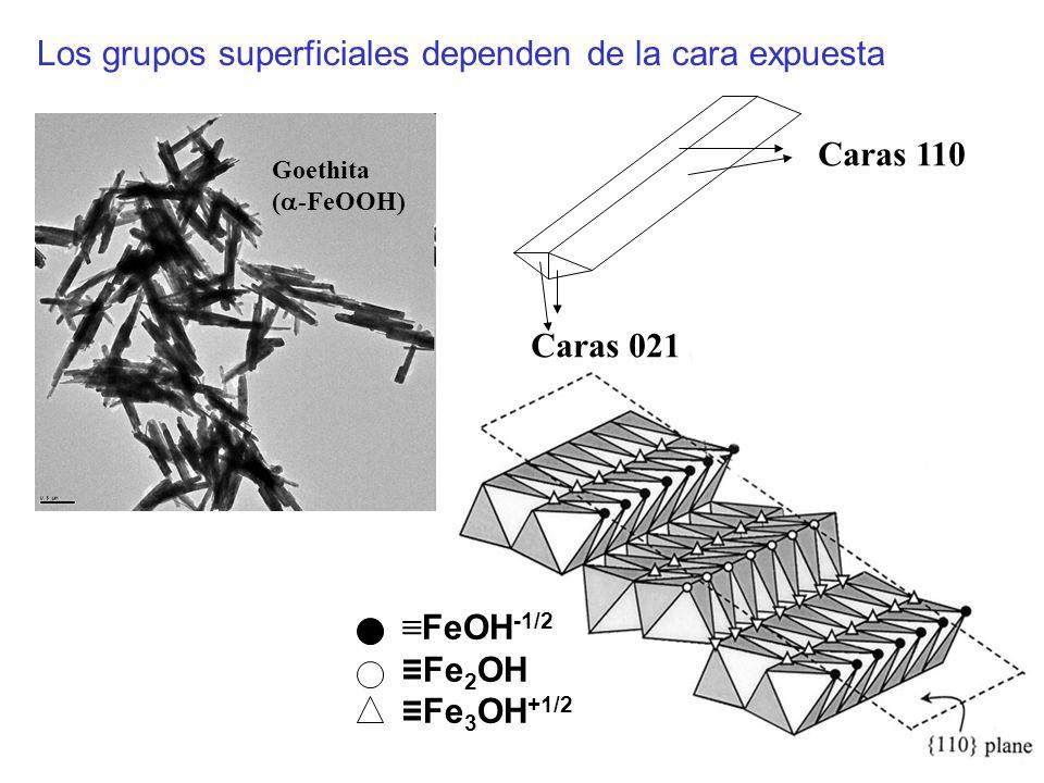 FeOH -1/2 Fe 2 OH Fe 3 OH +1/2 Caras 110 Caras 021 Los grupos superficiales dependen de la cara expuesta Goethita ( -FeOOH)