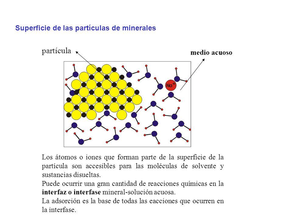 Los átomos o iones que forman parte de la superficie de la partícula son accesibles para las moléculas de solvente y sustancias disueltas.