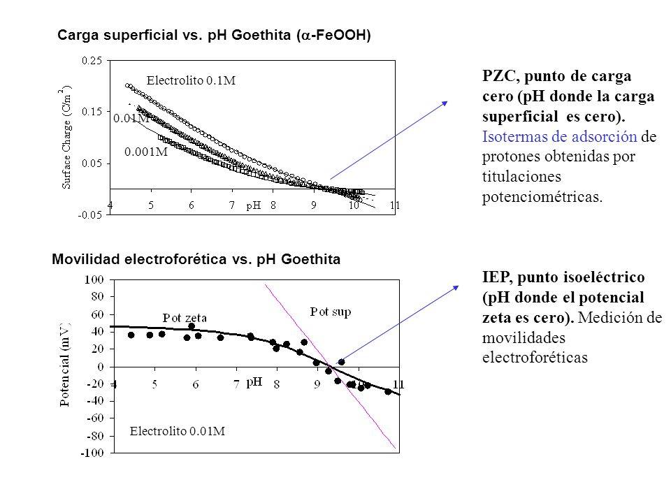 PZC, punto de carga cero (pH donde la carga superficial es cero).