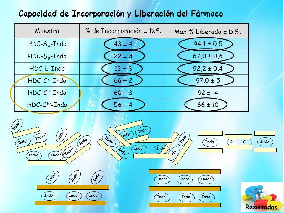 Muestra% de Incorporación ± D.S. Max % Liberado ± D.S. HDC-S A -Indo43 ± 494,1 ± 0,5 HDC-S B -Indo22 ± 367,0 ± 0,6 HDC-L-Indo13 ± 392,2 ± 0,4 HDC-C 8