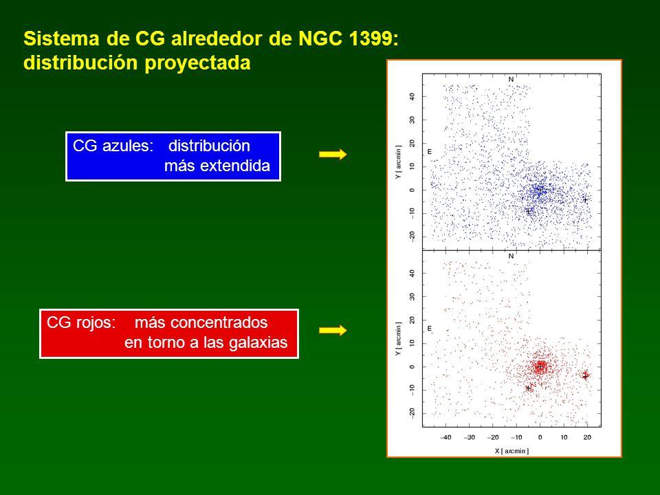 Sistema de CG alrededor de NGC 1399: distribución proyectada CG azules: distribución más extendida CG rojos: más concentrados en torno a las galaxias