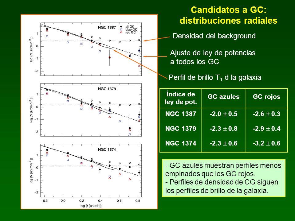 Candidatos a GC: distribuciones radiales Densidad del background Ajuste de ley de potencias a todos los GC Perfil de brillo T 1 d la galaxia - GC azul