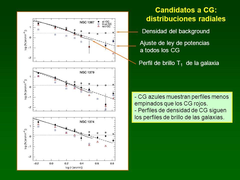 Candidatos a CG: poblaciones totales y frecuencias específicas Frecuencias específicas: - Magnitudes T 1 integradas (hasta el mismo radio que los SCG) - (C - T 1 ) de los perfiles de brillo superficial - (m – M) adoptados S N NGC 1387 1.8 ± 0.7 NGC 1379 1.4 ± 0.4 NGC 1374 2.4 ± 0.5 Poblaciones totales estimadas: N CG K-P (1997) Elson (1998) NGC 1387 390 ± 27 389 ± 110 NGC 1379 225 ± 23 314 ± 63 436 ± 30 NGC 1374 360 ± 17 410 ± 82 S N típicas para galaxias E 4 Harris (2003)