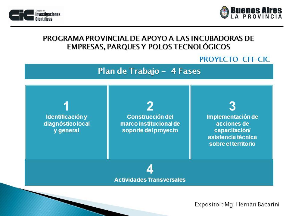 PROGRAMA PROVINCIAL DE APOYO A LAS INCUBADORAS DE EMPRESAS, PARQUES Y POLOS TECNOLÓGICOS Expositor: Mg. Hernán Bacarini Plan de Trabajo - 4 Fases PROY
