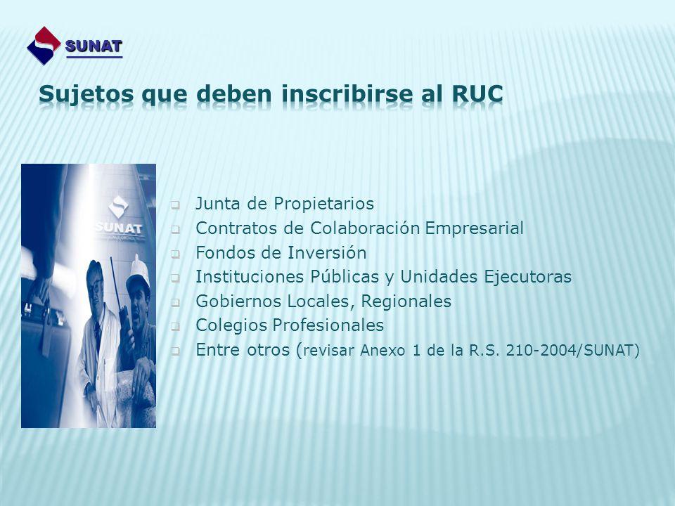 Junta de Propietarios Contratos de Colaboración Empresarial Fondos de Inversión Instituciones Públicas y Unidades Ejecutoras Gobiernos Locales, Region