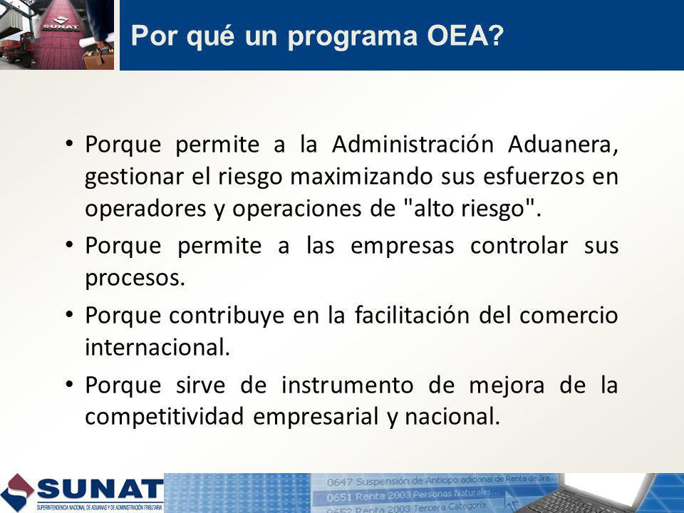 Por qué un programa OEA.
