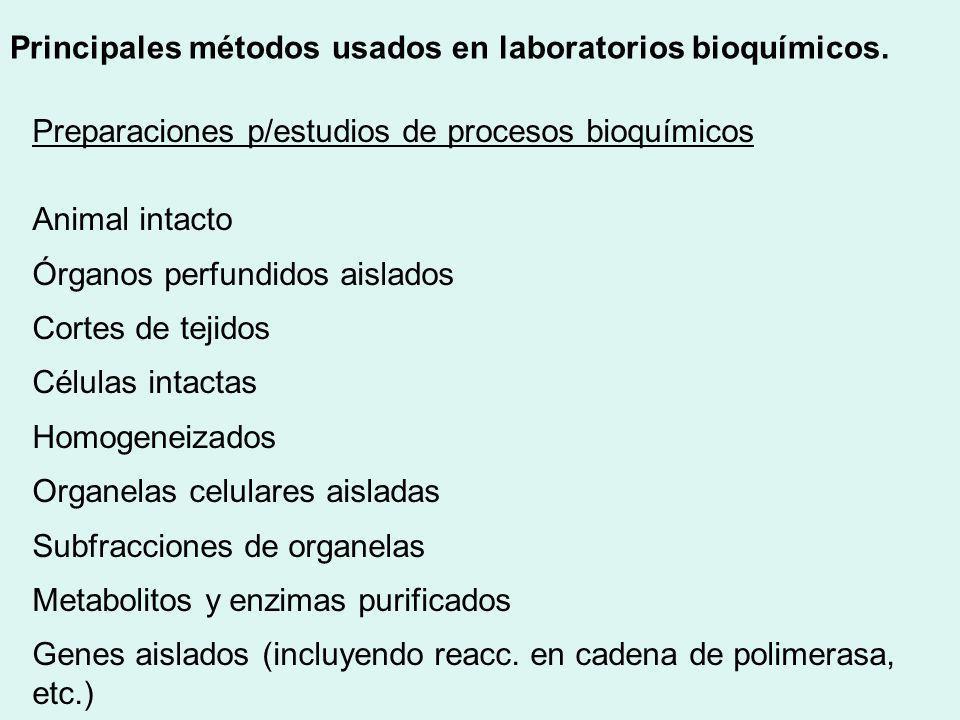 Preparaciones p/estudios de procesos bioquímicos Animal intacto Órganos perfundidos aislados Cortes de tejidos Células intactas Homogeneizados Organel