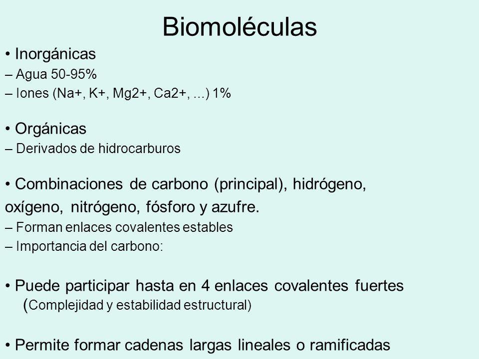 Biomoléculas Inorgánicas – Agua 50-95% – Iones (Na+, K+, Mg2+, Ca2+,...) 1% Orgánicas – Derivados de hidrocarburos Combinaciones de carbono (principal