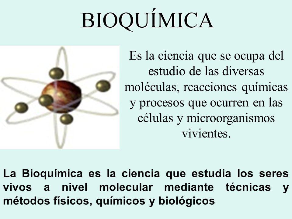 BIOQUÍMICA La Bioquímica es la ciencia que estudia los seres vivos a nivel molecular mediante técnicas y métodos físicos, químicos y biológicos Es la