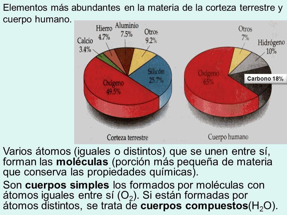 Elementos más abundantes en la materia de la corteza terrestre y cuerpo humano. Varios átomos (iguales o distintos) que se unen entre sí, forman las m
