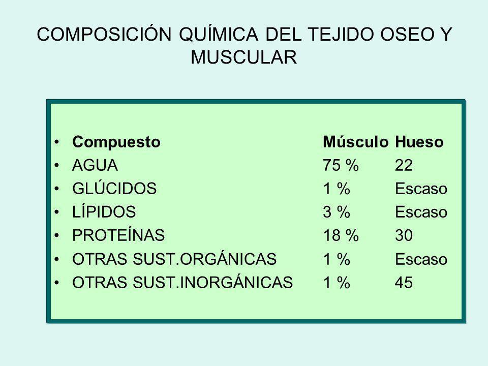 COMPOSICIÓN QUÍMICA DEL TEJIDO OSEO Y MUSCULAR CompuestoMúsculo Hueso AGUA75 %22 GLÚCIDOS1 %Escaso LÍPIDOS3 %Escaso PROTEÍNAS18 %30 OTRAS SUST.ORGÁNIC