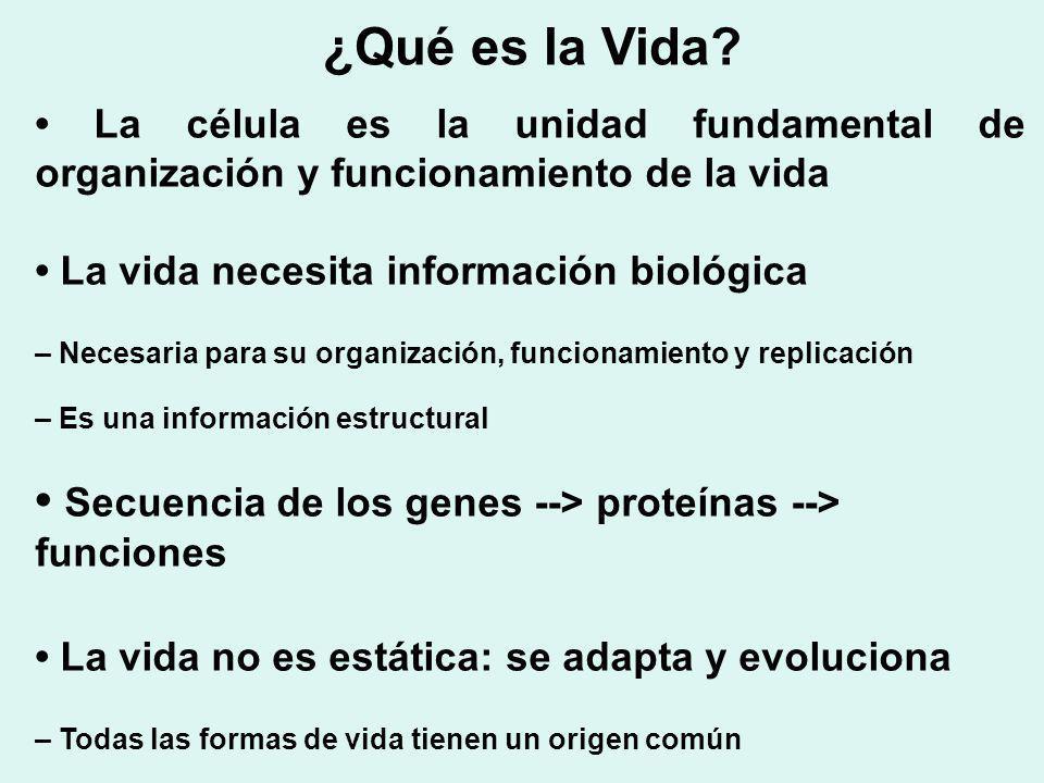 La célula es la unidad fundamental de organización y funcionamiento de la vida La vida necesita información biológica – Necesaria para su organización