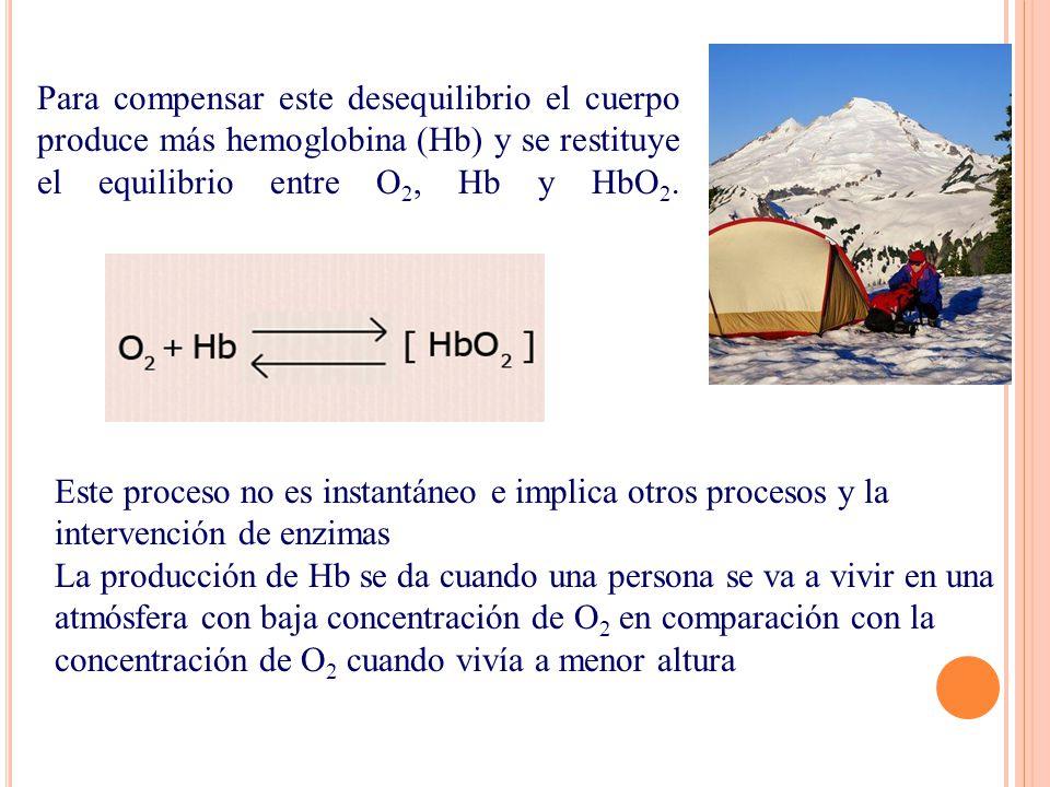Para compensar este desequilibrio el cuerpo produce más hemoglobina (Hb) y se restituye el equilibrio entre O 2, Hb y HbO 2. Este proceso no es instan