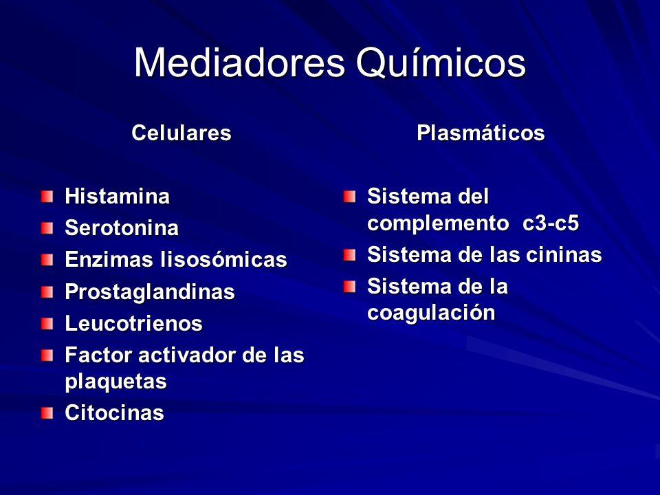Mediadores Químicos Celulares CelularesHistaminaSerotonina Enzimas lisosómicas ProstaglandinasLeucotrienos Factor activador de las plaquetas Citocinas