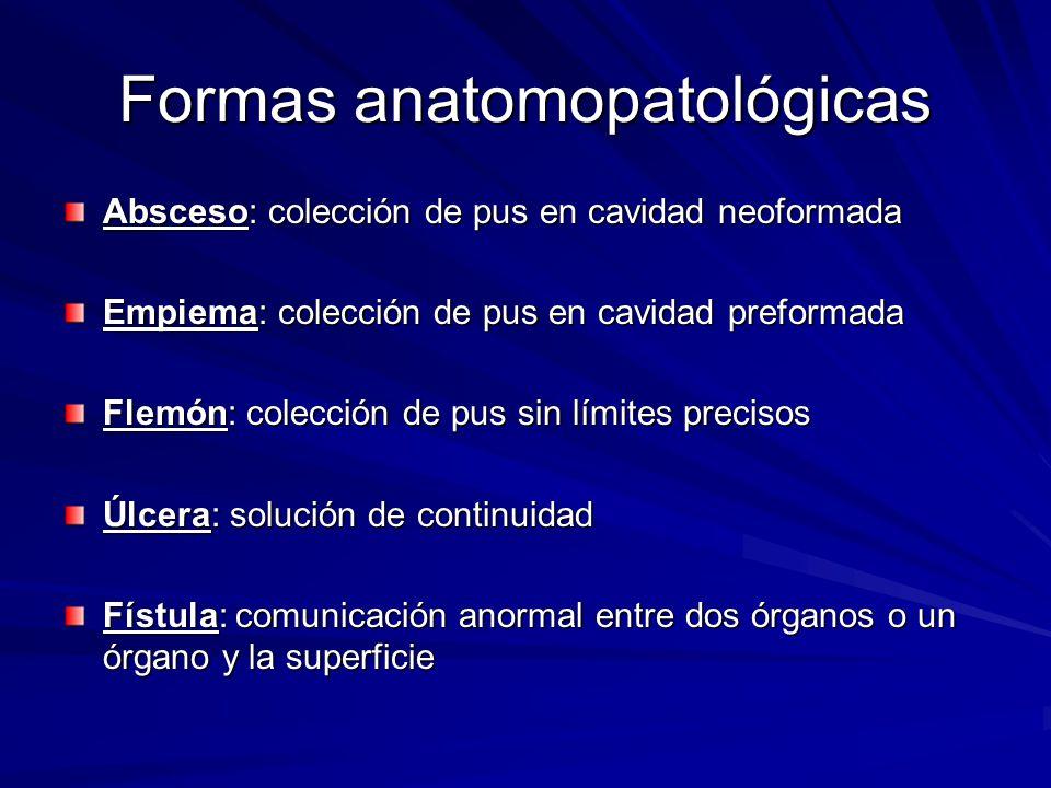 Formas anatomopatológicas Absceso: colección de pus en cavidad neoformada Empiema: colección de pus en cavidad preformada Flemón: colección de pus sin
