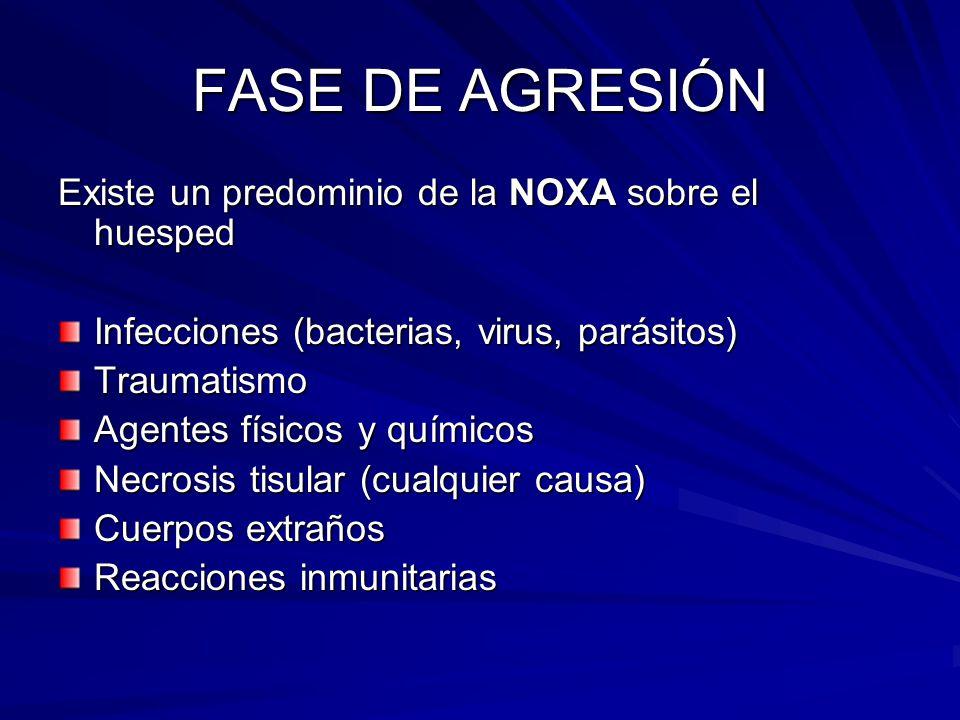 FASE DE AGRESIÓN Existe un predominio de la NOXA sobre el huesped Infecciones (bacterias, virus, parásitos) Traumatismo Agentes físicos y químicos Nec