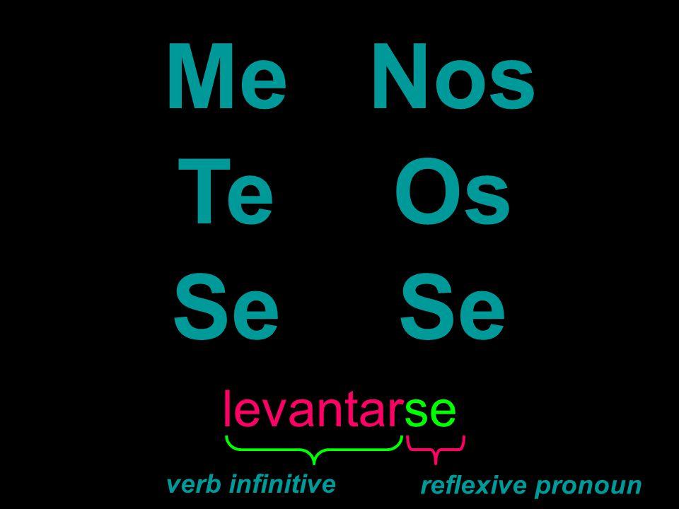 MeNos TeOs Se levantarse verb infinitive reflexive pronoun