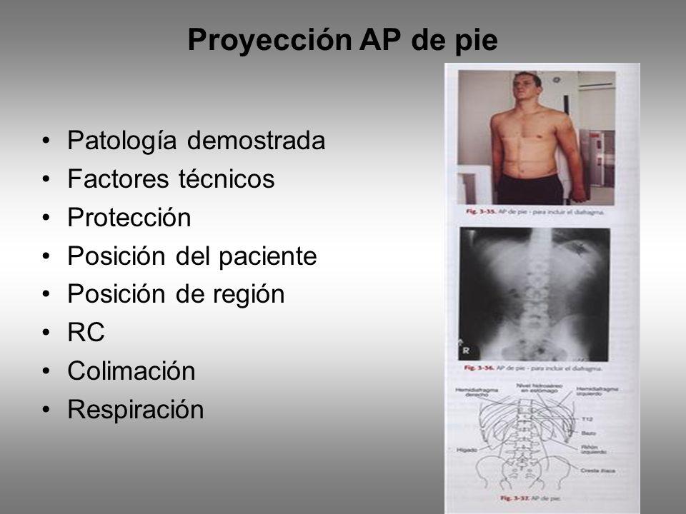 Proyección AP de pie Patología demostrada Factores técnicos Protección Posición del paciente Posición de región RC Colimación Respiración