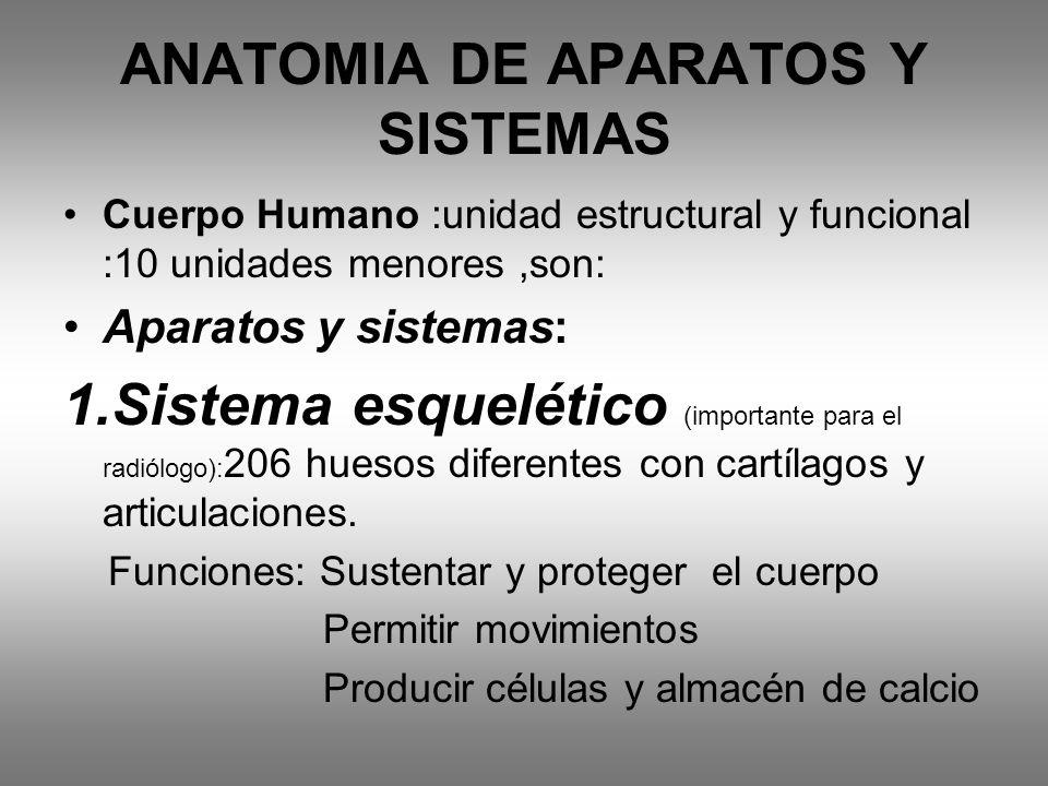 ANATOMIA DE APARATOS Y SISTEMAS Cuerpo Humano :unidad estructural y funcional :10 unidades menores,son: Aparatos y sistemas: 1.Sistema esquelético (im