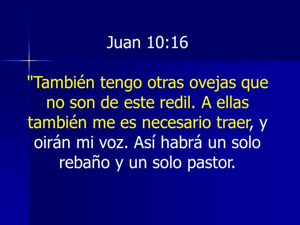 Juan 10:16 También tengo otras ovejas que no son de este redil.