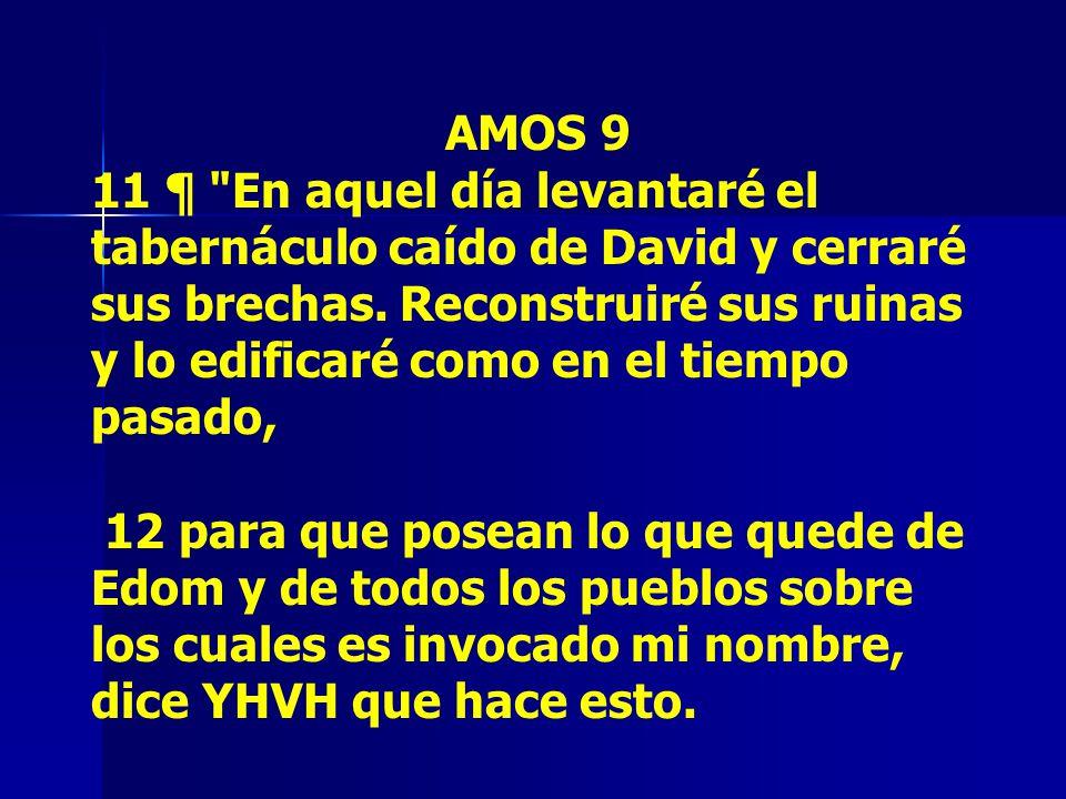 AMOS 9 11 ¶ En aquel día levantaré el tabernáculo caído de David y cerraré sus brechas.