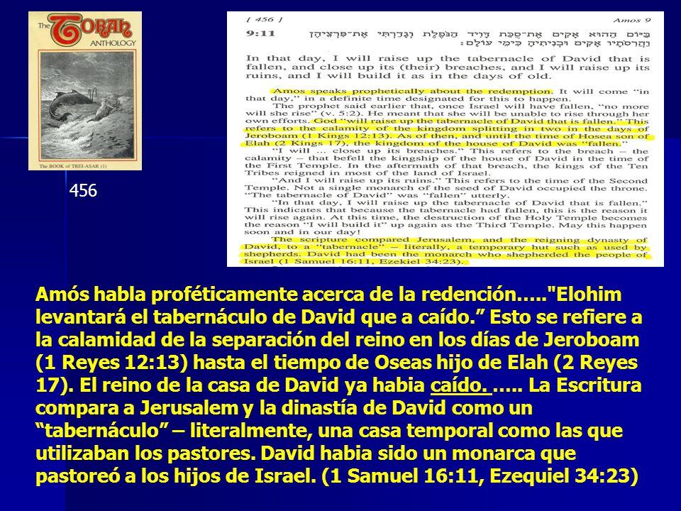 456 Amós habla proféticamente acerca de la redención….. Elohim levantará el tabernáculo de David que a caído.