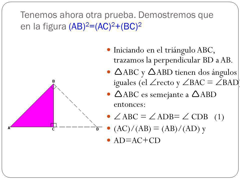 Utilizando las dos igualdades anteriores tenemos: (AC)/(AB) =(AB)/(AC+CD) (AC)(AC+CD)=(AB) 2 (AB) 2 =(AC) 2 +ACCD Por (1), ABC ABD AC/BC=BC/CD CD=(BC) 2 /(AC) (AB) 2 =(AC) 2 +(BC) 2 Que es lo que queríamos probar.