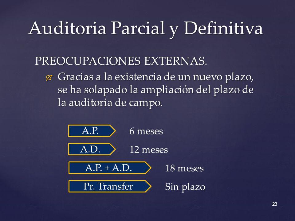 Auditoria Parcial y Definitiva 23 PREOCUPACIONES EXTERNAS. Gracias a la existencia de un nuevo plazo, se ha solapado la ampliación del plazo de la aud