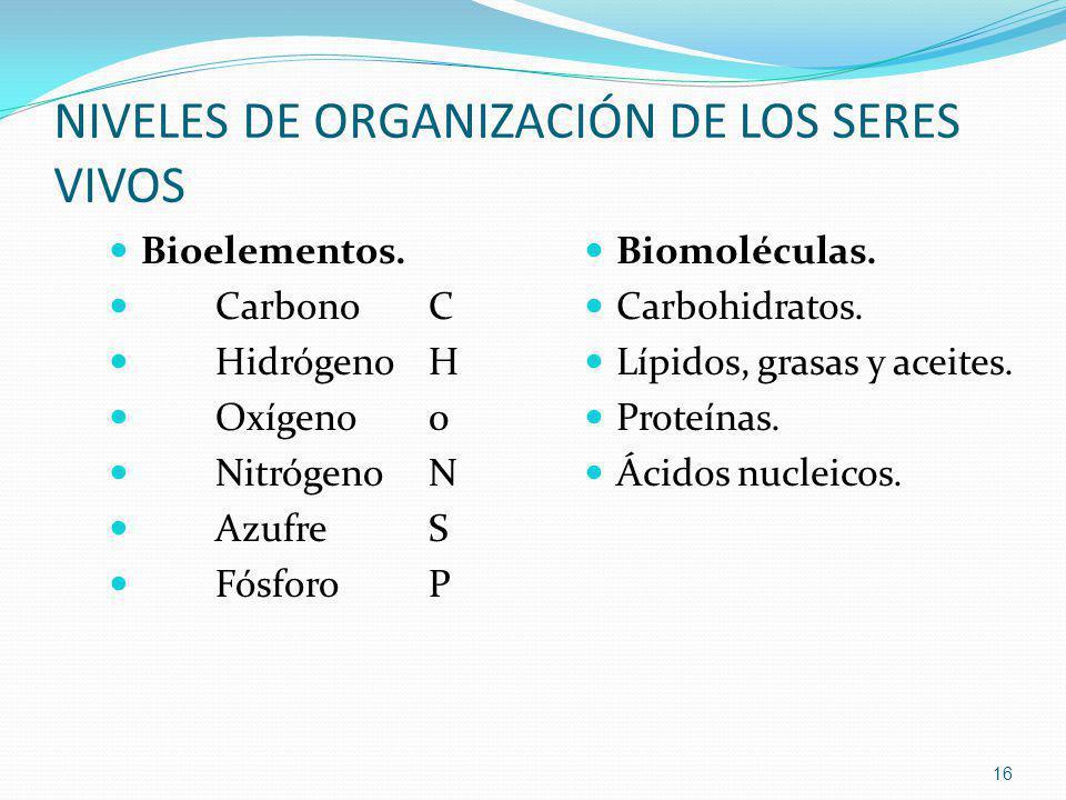 NIVELES DE ORGANIZACIÓN DE LOS SERES VIVOS Bioelementos. CarbonoC HidrógenoH Oxígeno0 NitrógenoN AzufreS FósforoP Biomoléculas. Carbohidratos. Lípidos