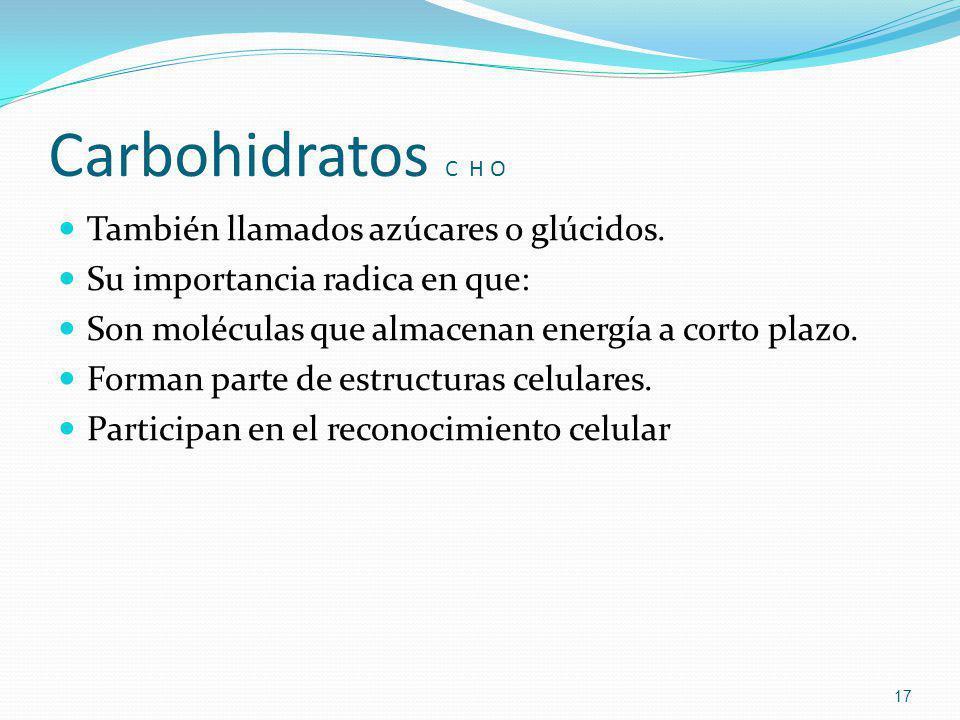 Carbohidratos C H O También llamados azúcares o glúcidos. Su importancia radica en que: Son moléculas que almacenan energía a corto plazo. Forman part