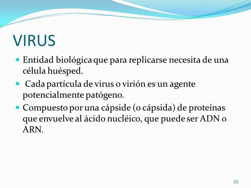 VIRUS Entidad biológica que para replicarse necesita de una célula huésped. Cada partícula de virus o virión es un agente potencialmente patógeno. Com