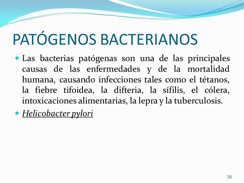 PATÓGENOS BACTERIANOS Las bacterias patógenas son una de las principales causas de las enfermedades y de la mortalidad humana, causando infecciones ta