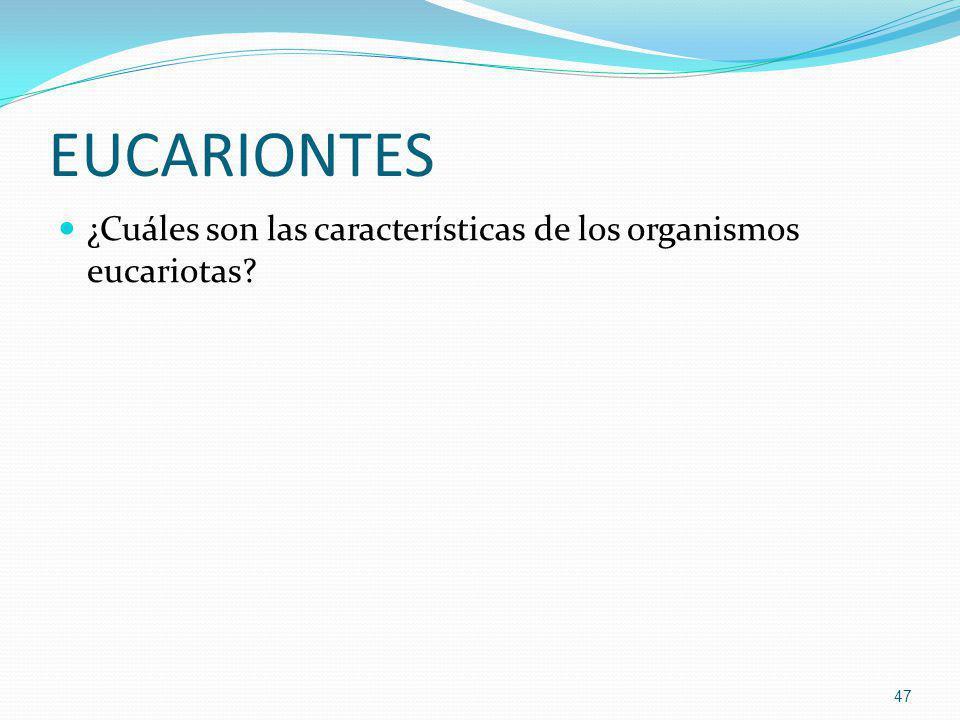 EUCARIONTES ¿Cuáles son las características de los organismos eucariotas? 47