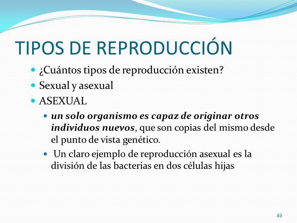 TIPOS DE REPRODUCCIÓN ¿Cuántos tipos de reproducción existen? Sexual y asexual ASEXUAL un solo organismo es capaz de originar otros individuos nuevos,