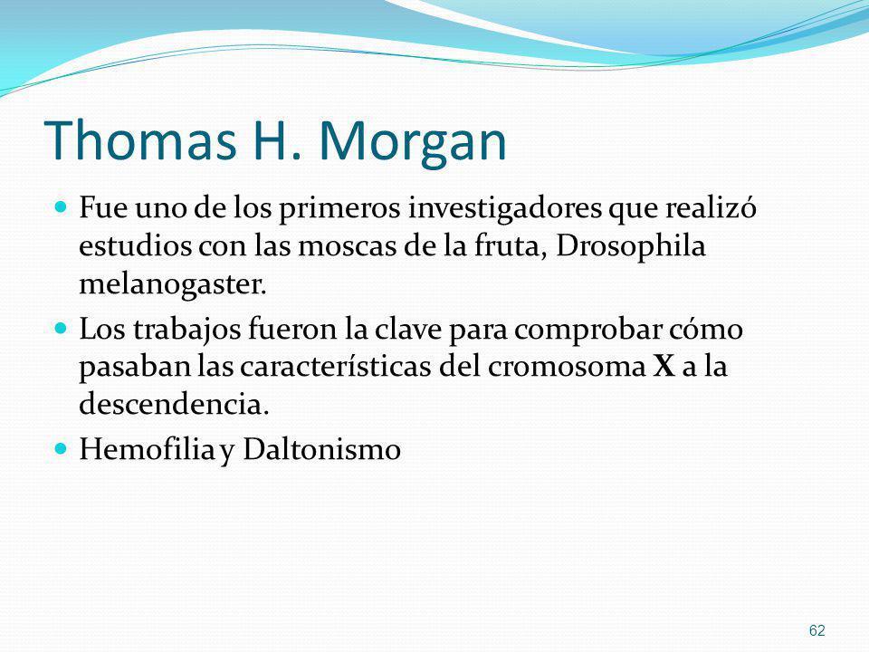 Thomas H. Morgan Fue uno de los primeros investigadores que realizó estudios con las moscas de la fruta, Drosophila melanogaster. Los trabajos fueron